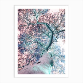 Fever Tree Art Print