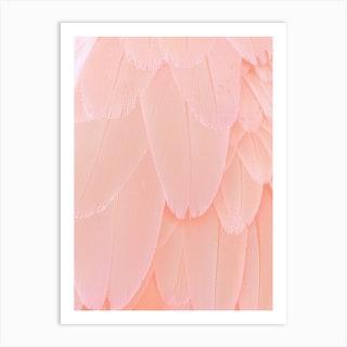 Blush Scandi Feathers  Art Print