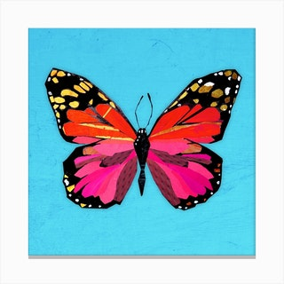 Butterfly In Red And Pink Canvas Print