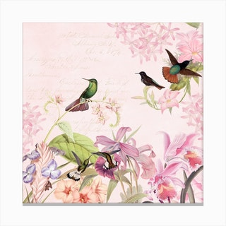 Hummingbirds And Tropical Flowers Canvas Print