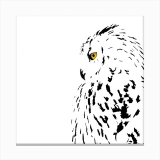 Snowy Eyed Owl White Series Square Canvas Print