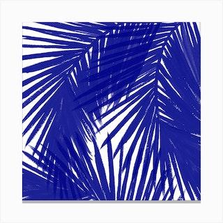 Royal Palms Square Canvas Print