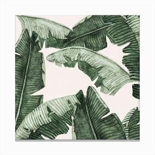 Under Palm Leaves2 Canvas Print