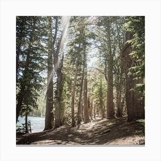 Mcleod Lake Trail Desaturated Square Canvas Print