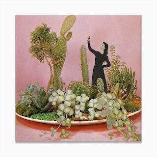 Cacti Installation Canvas Print