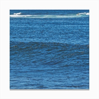 Peripheral Action Canvas Print