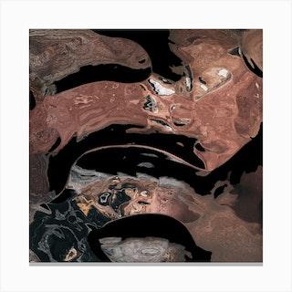 Black Desert Waters Canvas Print
