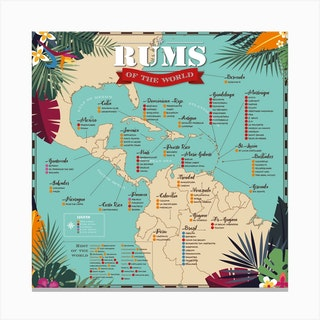 Rums Of The World Square Canvas Print
