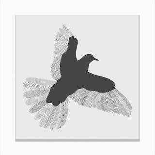 Grey Bird Canvas Print