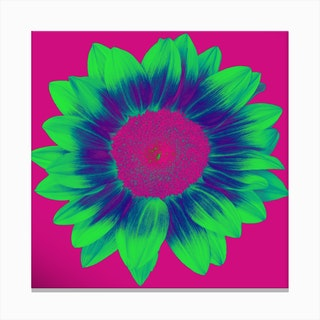 Neon Sunflower Square Canvas Print