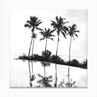 Palm Tree Reflections Black Square Canvas Print