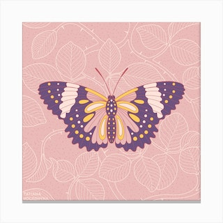 Butterfly In Pink Background From Rose Square Canvas Print