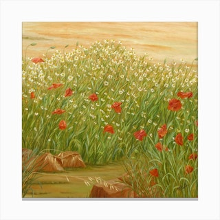 Daisies And Poppies Square Canvas Print