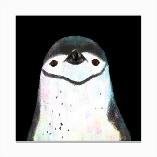 Chinstrap Penguin Square Canvas Print