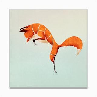 Fox  I Canvas Print