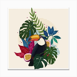 The Toucan I Canvas Print
