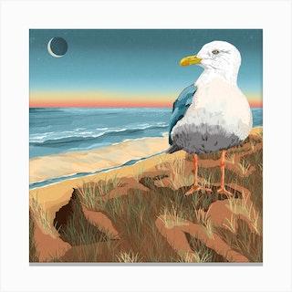 Seagull At The Beach Square Canvas Print