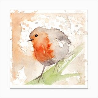 Robin Bird 3 Canvas Print
