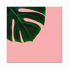 Green Plant Canvas Print