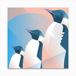 Emperor Penguin Square Canvas Print
