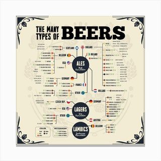 Beer Types Of The World Square Canvas Print