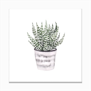 Potted Plant 1 Canvas Print
