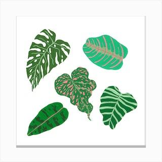 Tropical Greens Canvas Print