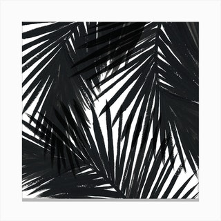 Black Palms Square Canvas Print