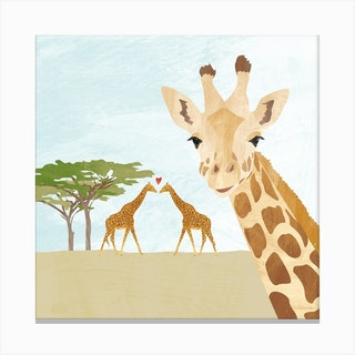 Giraffes In Africa Canvas Print