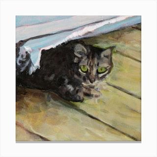 Hiding Cat Square Canvas Print