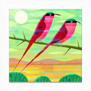 Carmine Bee Eaters Square Canvas Print