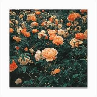 Forest Of Roses Canvas Print