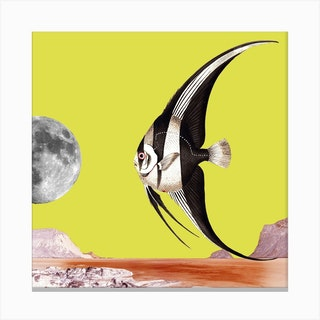 Plenty Of Fish In The Sea Yellow Square Canvas Print