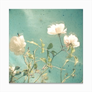 Flowers And Blue Canvas Print