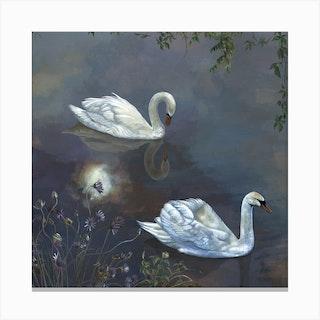 Moonlight Swans Canvas Print