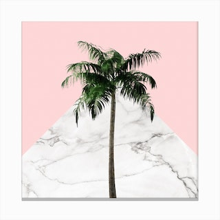 Palm Tree on Pink and Marble Wall Canvas Print