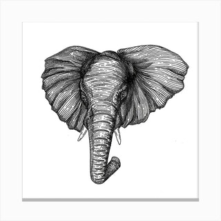 Elephant Square Canvas Print