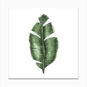 Tropical Leaf 1 Canvas Print