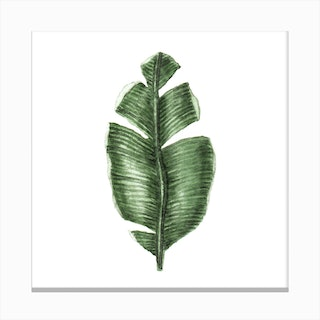 Tropical Leaf 1 Canvas Print