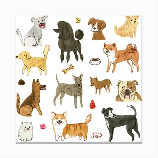 Who Let The Dogs Out Square Canvas Print