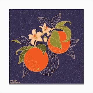 Orange Branch Square Canvas Print
