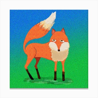 Fox Square Canvas Print