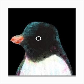 Adelie Penguin Square Canvas Print