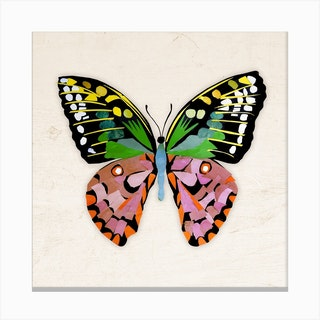 Butterfly In Green And Purple Canvas Print