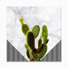 Cactus on White Marble and Zigzag Wall Canvas Print