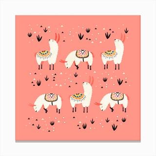 White Llamas In Pink Desert Canvas Print