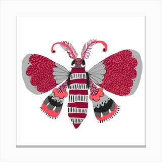 Butterfly Grey 2 Canvas Print