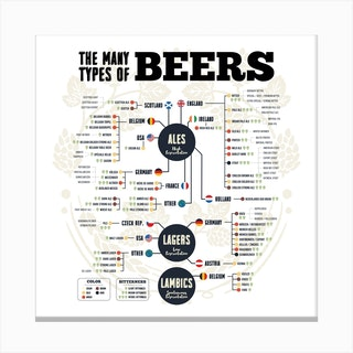 Beer Types Of The World (White) Square Canvas Print