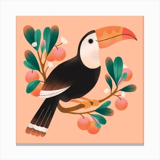 Summer Toucan Square Canvas Print