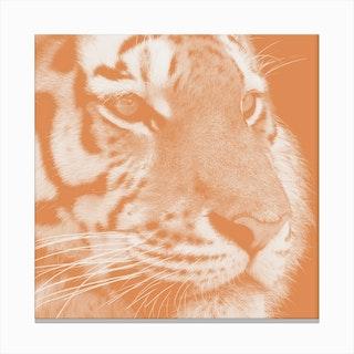Tiger Pastel Salmon Square Canvas Print